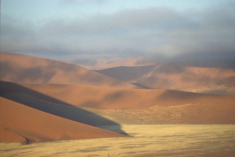 Namib1 bis