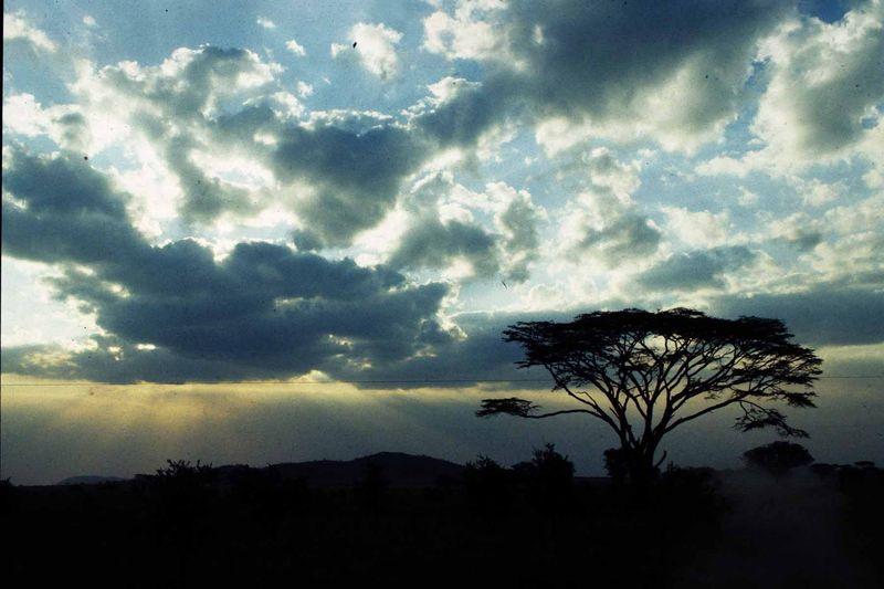 Tanzanie22 copie