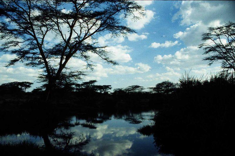 Tanzanie24 copie