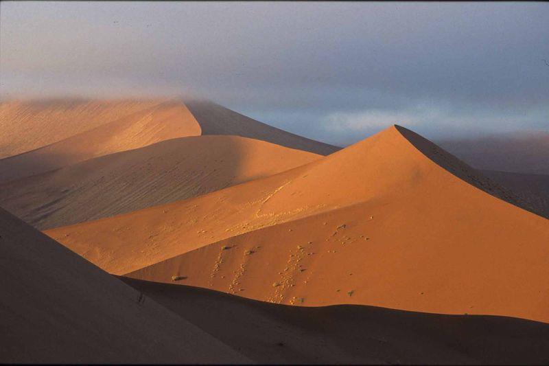 Namib14