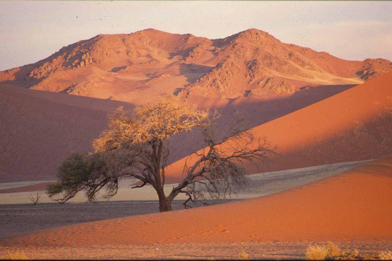 Namib5