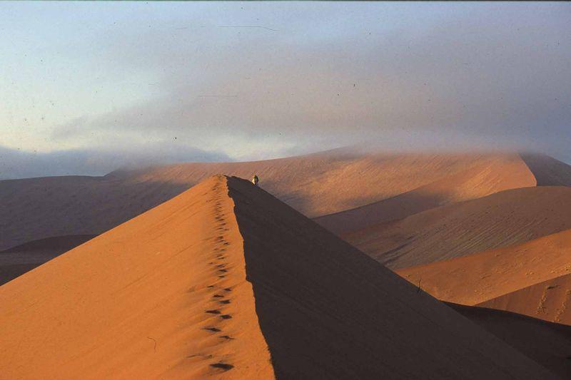 Namib4