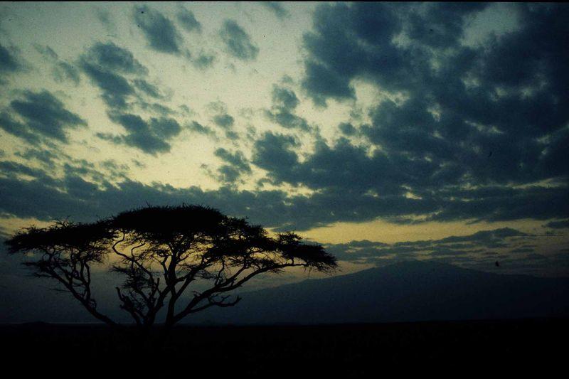 Tanzanie21 copie
