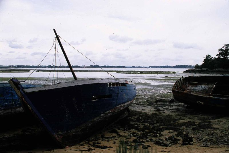 Morbihan11 copie